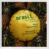 Brazil. The Complete Collection Vol 3 & 4 by Brazil Voices