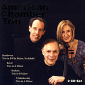 Play & Download American Chamber Trio by Daniel Morganstern | Napster