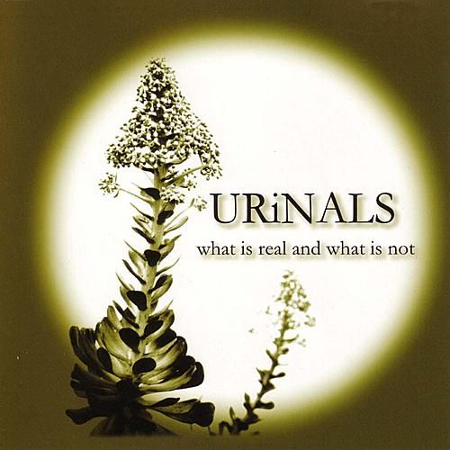 Play & Download What Is Real And What Is Not by Urinals | Napster