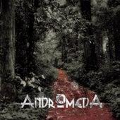 Detuve el Tiempo by Andromeda
