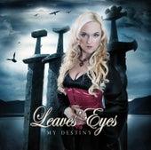 My Destiny by Leaves Eyes