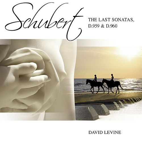 Play & Download Schubert Sonatas D959 D960 by David Levine | Napster