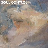 Silent Reality by Soul Control