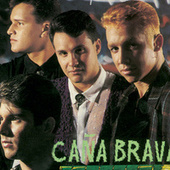 Play & Download No Me Faltes Nunca by Caña Brava | Napster