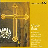 Play & Download Choral Recital: Osnabruck Youth Choir - WEELKES, T. / TALLIS, T. / LASSUS, O. / LUDOVICO DA VITTORIA / GESUALDO, C. / LOTTI, A. / PALESTRINA, G.P. by Franz-Josef Rahe | Napster