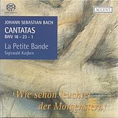 Play & Download BACH, J.S.: Cantatas, Vol.  6 (Kuijken) - BWV 1, 18, 23 by Jan van der Crabben | Napster