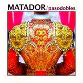 Play & Download Yo Quiero Ser Matador by Banda Taurina San Fermin | Napster