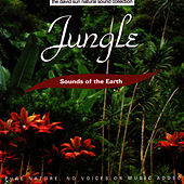 Play & Download Jungle by Sounds Of The Earth | Napster