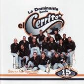 Aún No Has Regresado by Banda El Cerrito