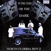In The Cold Or The Dark by Various Artists