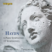 Play & Download Haydn: Die Sinfonien by Various Artists | Napster