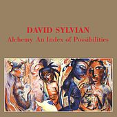 Alchemy: An Index of Possibilities by David Sylvian