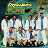 Play & Download El Papalote by Tropicalísimo Lobo | Napster