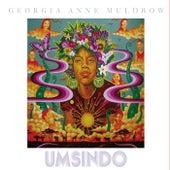 Umsindo by Georgia Anne Muldrow