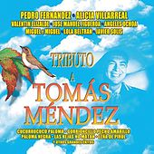 Tributo A Tomas Mendez by Various Artists