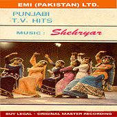 T.V Hits ( Punjabi ) by Various Artists