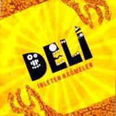 Play & Download Inleten Nagmeler by Deli | Napster