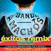 Play & Download Exitos Remix by Banda Machos | Napster