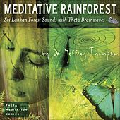 Play & Download Meditative Rainforest by Dr. Jeffrey Thompson | Napster