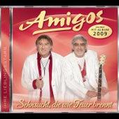 Play & Download Sehnsucht, die wie Feuer brennt by Los Amigos | Napster