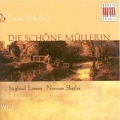 Play & Download SCHUBERT, F.: Schone Mullerin (Die) (Lorenz, Shetler) by Siegfried Lorenz | Napster