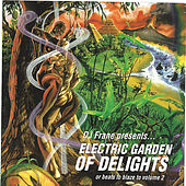 Play & Download Electric Garden of Delights by DJ Frane | Napster