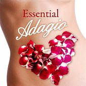 Play & Download Essential Adagio by Various Artists | Napster