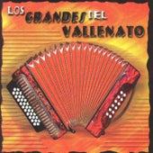 Play & Download Los Grandes del Vallenato by Los Hijos Del Rey | Napster