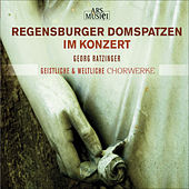 Play & Download Choral Concert: Regensburg Cathedral Choir - GRATIANI, B. / PALESTRINA, G.P. da / VICTORIA, T.L. de / CROCE, G. (Sacred and Secular Choral Works) by Georg Ratzinger | Napster