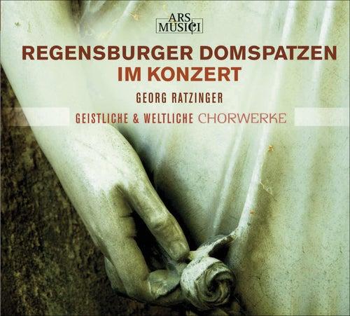 Play & Download Choral Concert: Regensburg Cathedral Choir - GRATIANI, B. / PALESTRINA, G.P. da / VICTORIA, T.L. de / CROCE, G. (Sacred and Secular Choral Works) by Georg Ratzinger   Napster