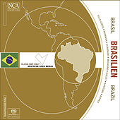 Play & Download Chamber Music (Brazilian) - GALLET, L. / VILLA-LOBOS, H. / GUARNIERI, C. / MIGNONE, F. / SANTORO, C. / MIRANDA, R. / RIPPER, J.G. by Various Artists | Napster