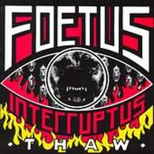 Play & Download Thaw by Foetus | Napster