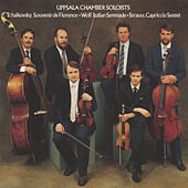 Play & Download Tchaikovsky - Strauss - Wolf by Uppsala Chamber Soloists | Napster