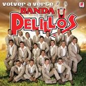 Play & Download Volver A Verte by Banda Pelillos | Napster