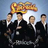 Raices by Liberación