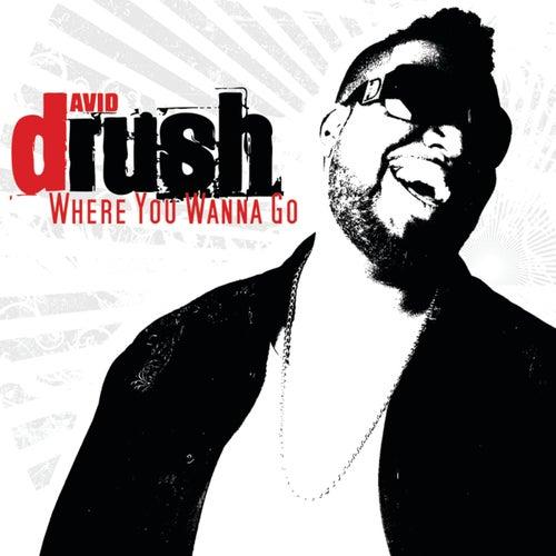 Where You Wanna Go by David Rush