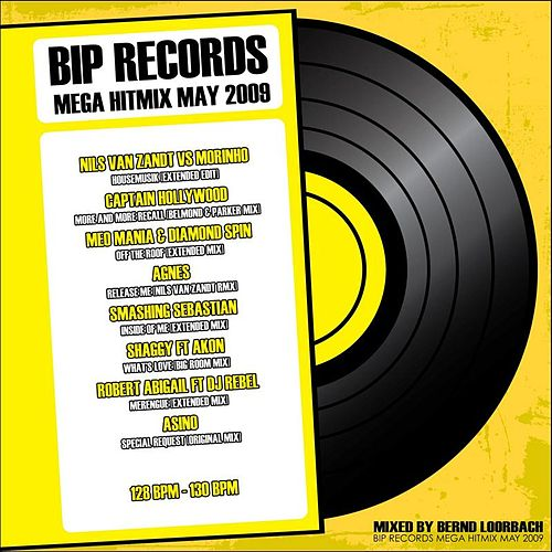 Mega Hitmix May 2009 by Various Artists