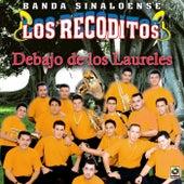 Play & Download Debajo De Los Laureles by Banda Los Recoditos   Napster