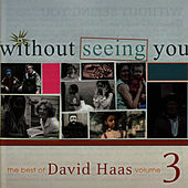 Play & Download Without Seeing You: The Best of David Haas, Vol. 3 by David Haas | Napster