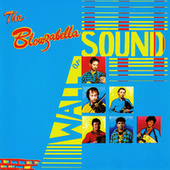 The Blowzabella Wall of Sound by Blowzabella