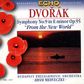 Dvořák: Symphony No.9 'From the New World' by Various Artists