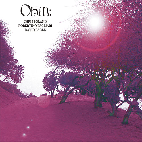 Play & Download Ohm by Ohm | Napster