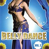 Belly Dance Compilation Volume 2 by Arabic Belly Dance Group