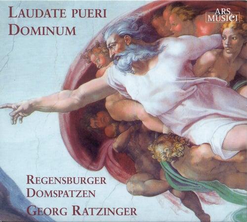 Play & Download Choral Concert: Regensburg Cathedral Choir - DITTERSDORF, C.D. von / LASSO, O. di / PALESTRINA, G.P.  da / MENDELSSOHN, Felix / SCHUBERT, F. by Various Artists   Napster