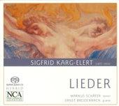 KARG-ELERT, S.: Lieder (Schafer, Breidenbach) by Markus Schafer
