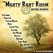 Play & Download The Mighty Right Riddim by Various Artists | Napster