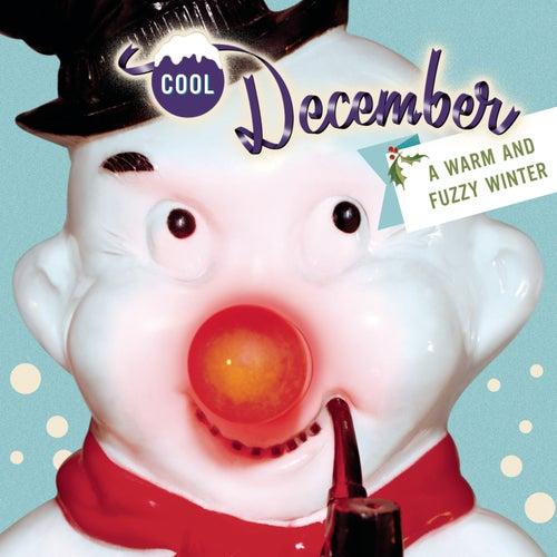 Wonderland: Cool December by Various Artists