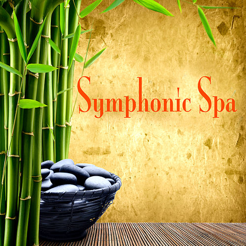 Play & Download Symphonic Spa by Various Artists | Napster