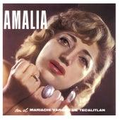 Amalia, Vol. 1 by Amalia Mendoza