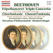 Play & Download BEETHOVEN, L. van: Triple Concerto / Choral Fantasy (Rosel, Funke, Timm, Leipzig Radio Chorus, Dresden Philharmonic, Kegel) by Various Artists | Napster